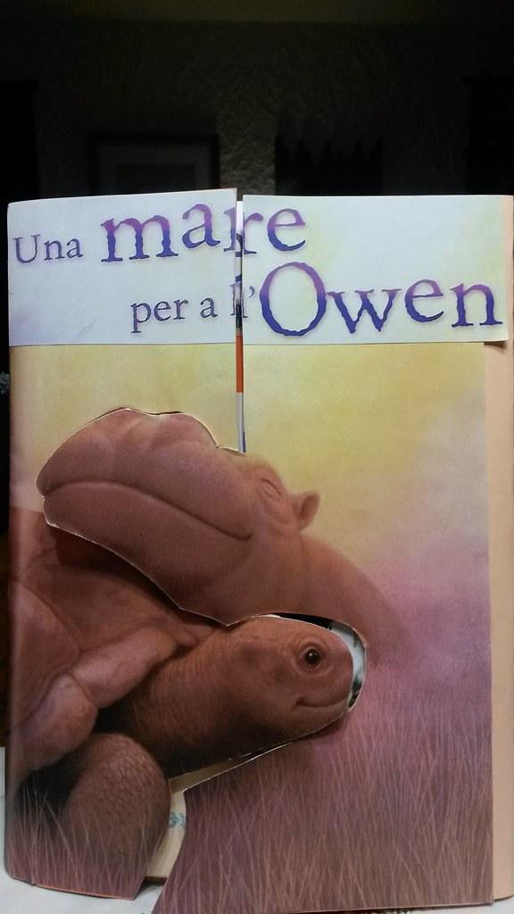 lapbook Owen