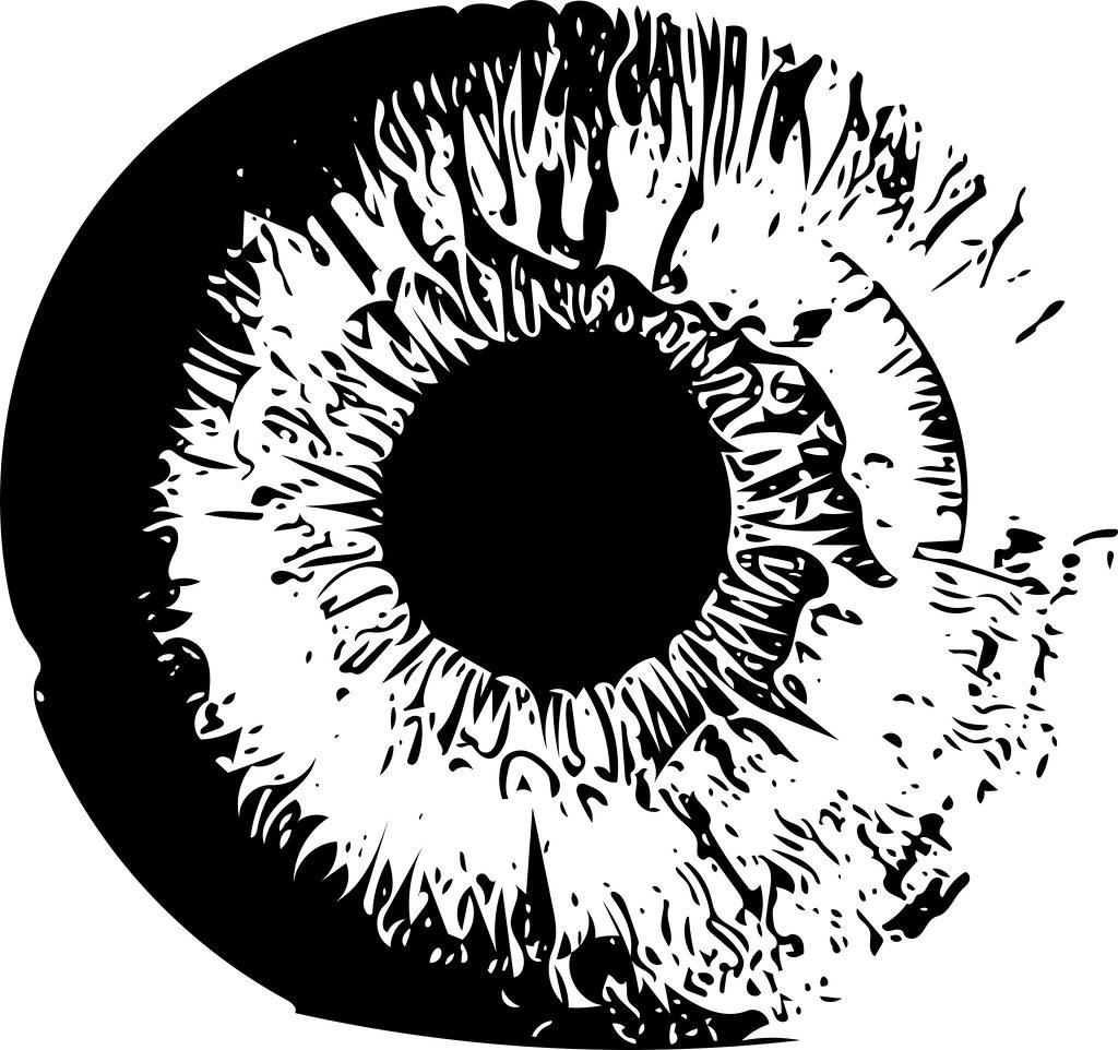 eyeball vector vectorized version of a picture of an iris flickr rh flickr com eyeball vector free eyeball vector image