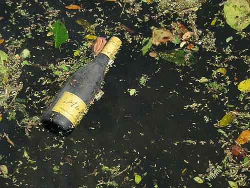 litter in waterway