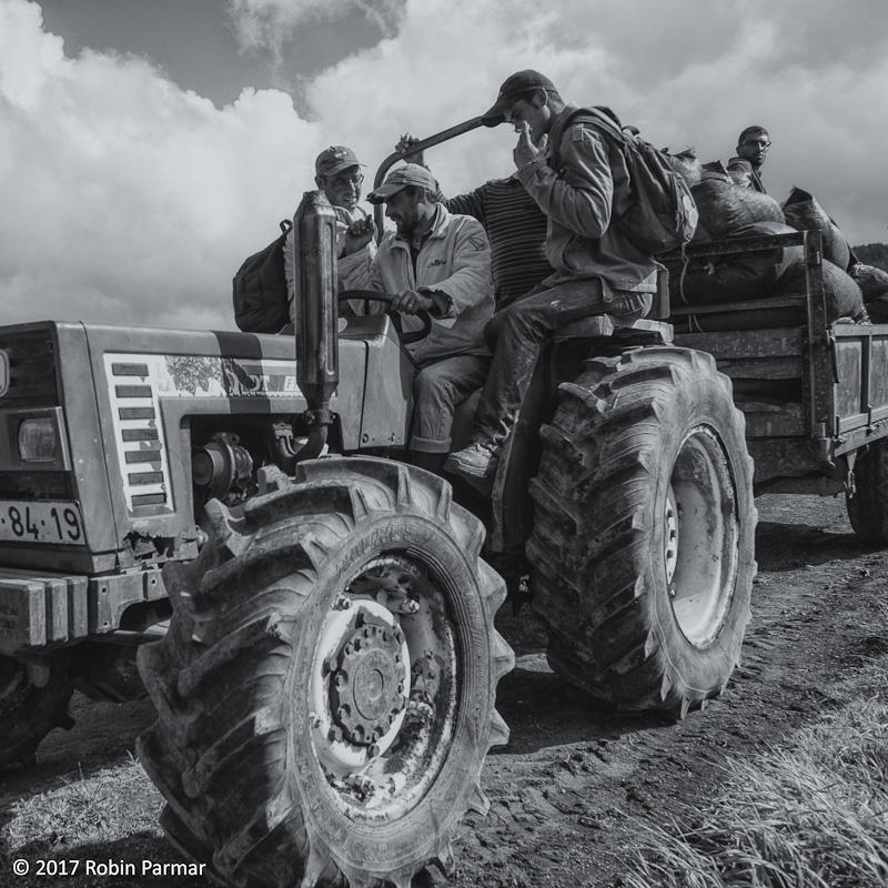 tractor returning workers