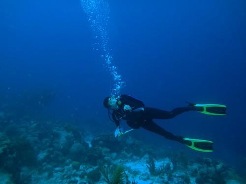 Trip to Bonaire - Underwater Sketching
