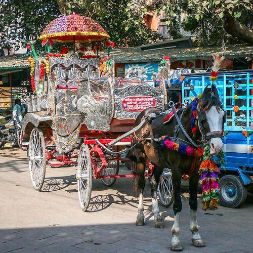 Gorgeous carriage in Jodhpur, India ジョードプル ゴージャスな馬車