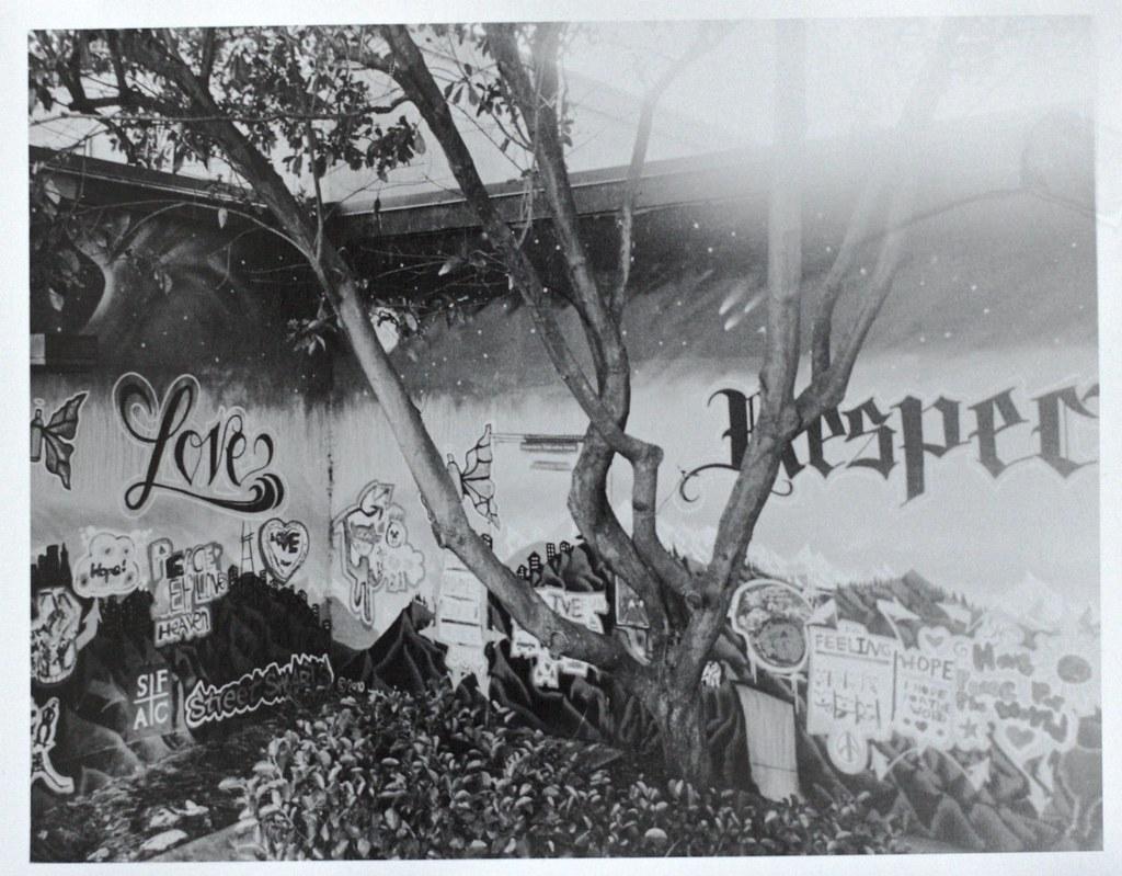 Grafitti on a school in SF
