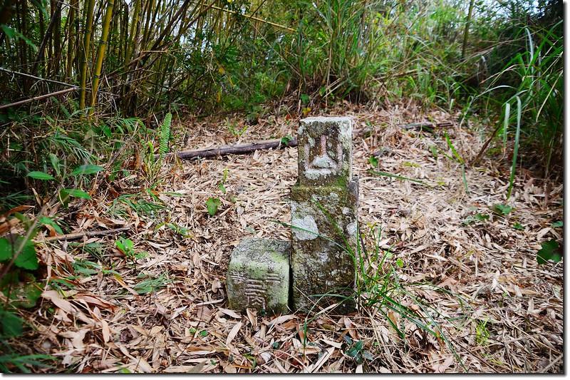尖石山三等三角點(#6248)及山字森林三角點 2