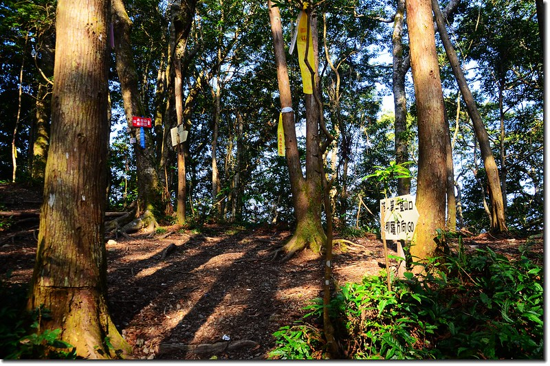 高台山登山步道 4