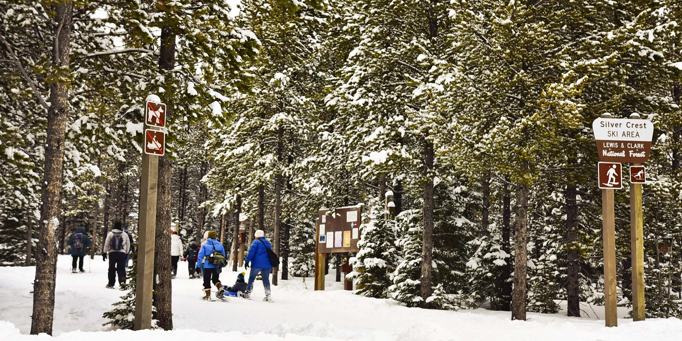 Find information and maps about cross country skiing in the Little Belt Mountains.