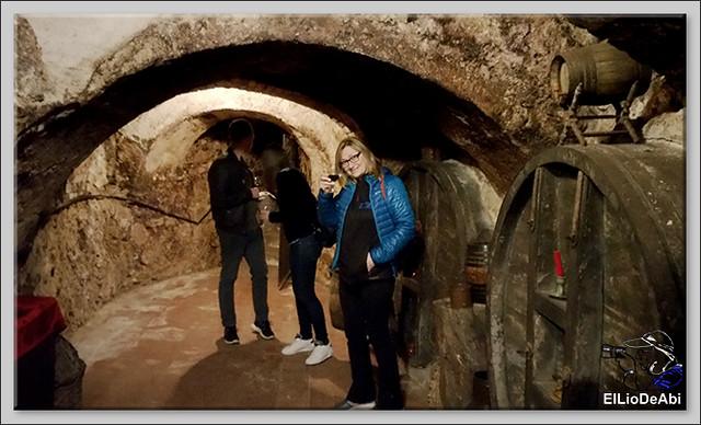 Bodegas medievales don Angel y don Carlos en Aranda de Duero  (12)