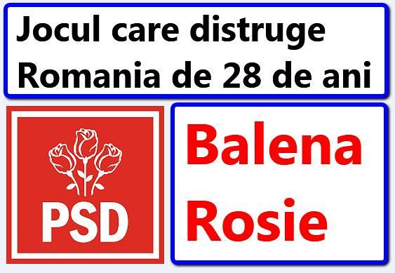 Mafiotii PSD-isti au beneficiat de dreptul constitutional de a ramane comunisti si dupa 1989