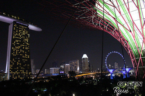 160910f OCBC Skywalk Gardens by the Bay _098