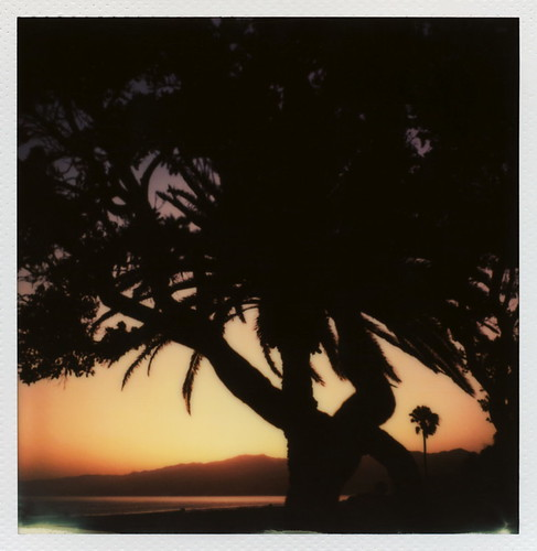 'Roid Week Sunset | by tobysx70
