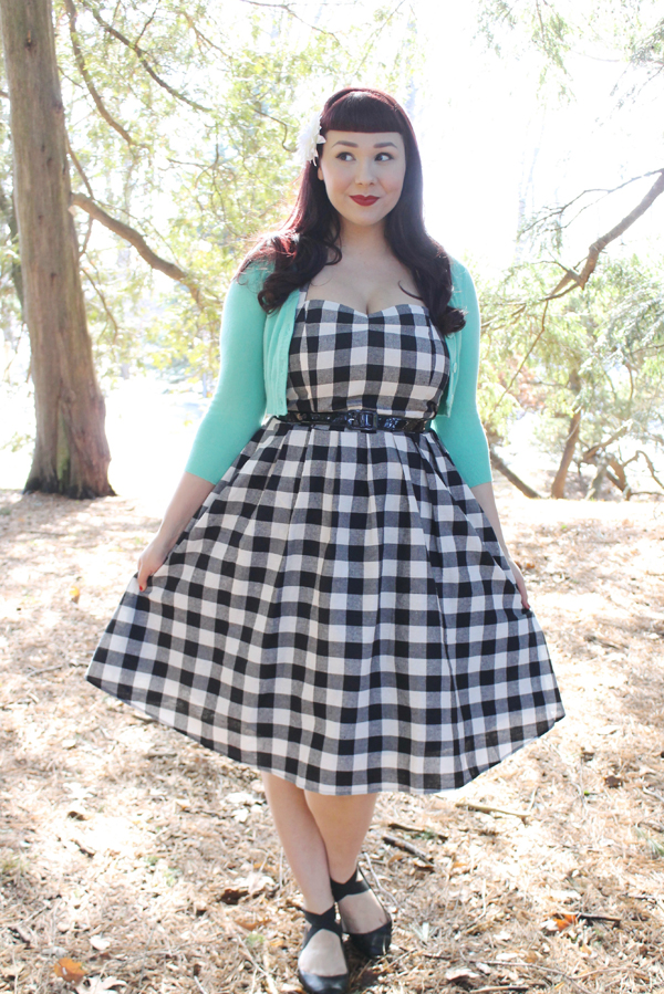 dolly and dotty checker dress