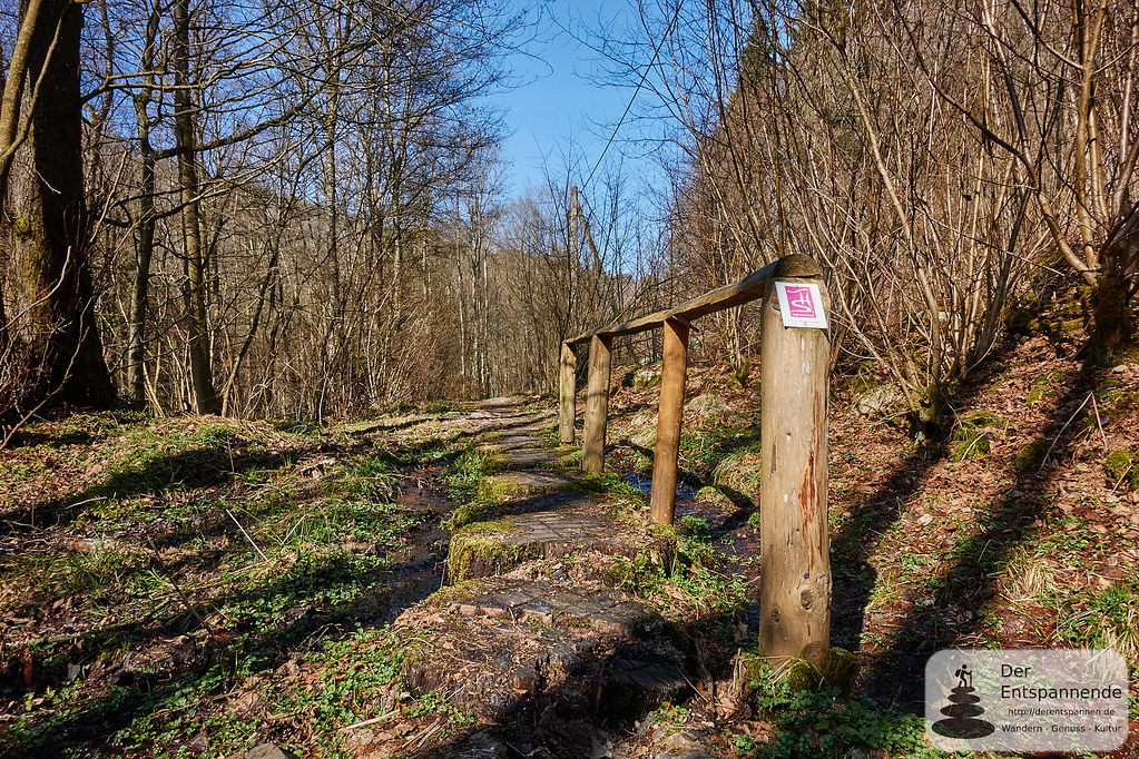 Holzbrücke über den Pfad
