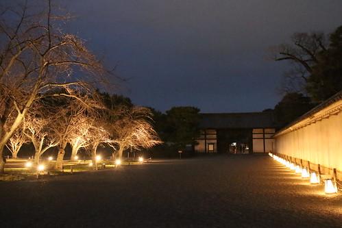 京都 元離宮二条城 桜の園(左)と桃山門(正面)