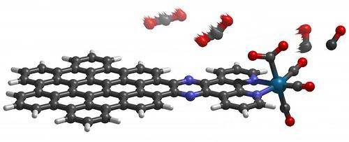 molecular-leaf-in-action_1024