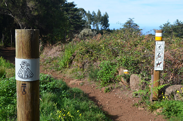 Waymarks, Canary Islands