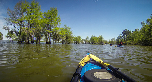 Paddle to Church Island with the Tri-County Blueways Paddlers-068