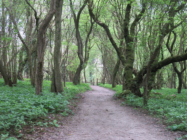 North Downs Way - Merstham to Oxted