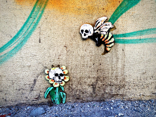 Skull Graffiti NY (April 3 2016)