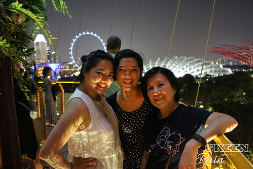 160910f OCBC Skywalk Gardens by the Bay _058
