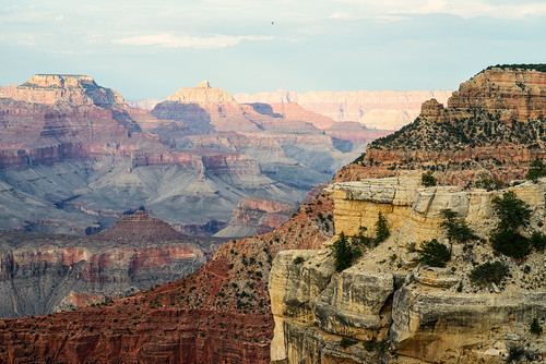 Grand Canyon 2014 | by joel8x