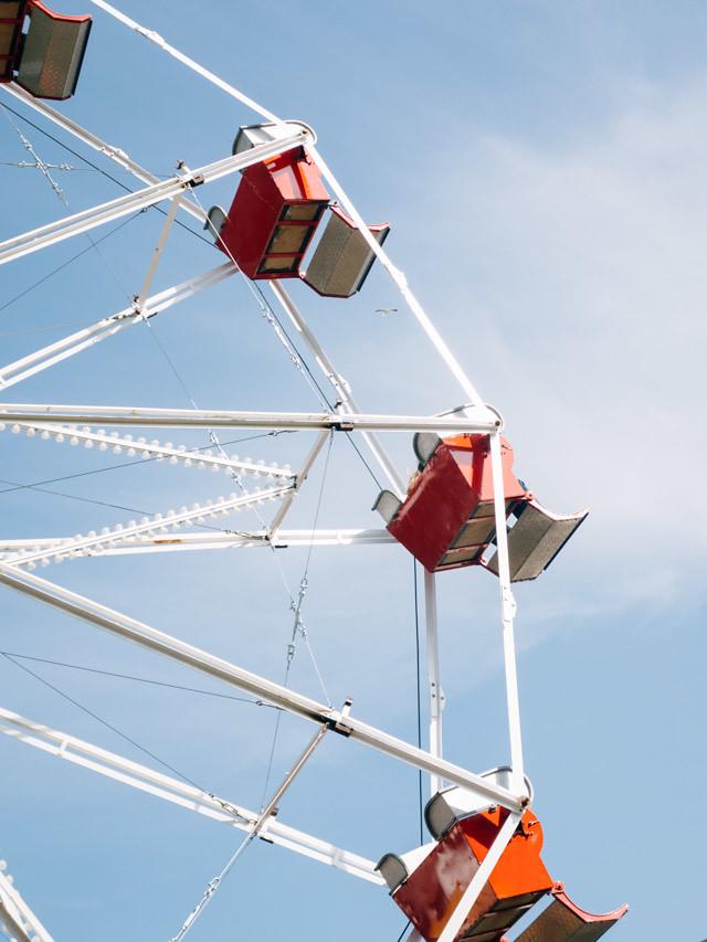 ferris wheel - RHS cardiff