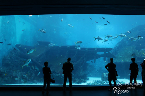 160908d Maritime Museum and SEA Aquarium _040