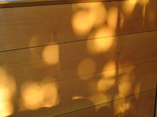 bolli di luce