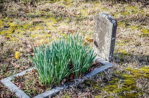 Smyrna ARP Church and Cemetery-018