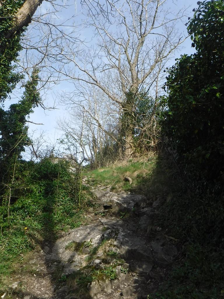 Castleberg 7