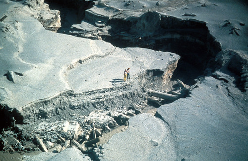 Image is an aerial view looking down on on a sizeable erosion channel stretching from the lower left to middle right of the photo. Another channel crosses its end, making a T. Two geologists stand on the bank of the first channel, looking down at the enormous tree trunks lodged in the debris, revealed by the erosion. One of them has made a bridge.