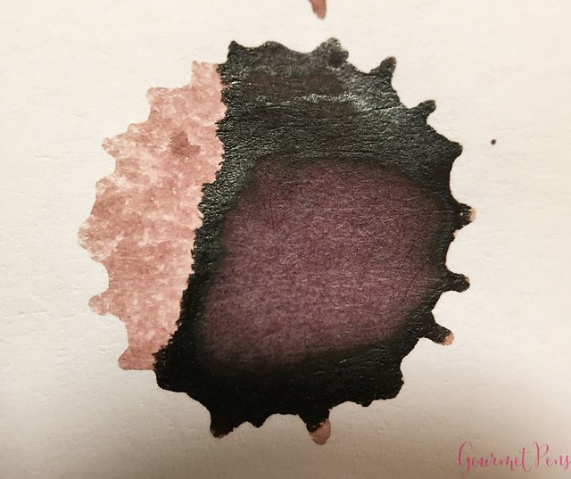 Ink Shot Review @RobertOsterInk Hippo Purple 14