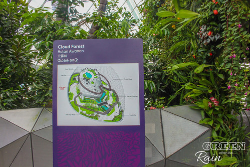 160909d Cloud Dome Gardens by the Bay _027