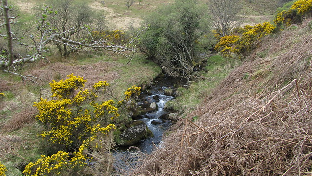 Crossing Bala Brook