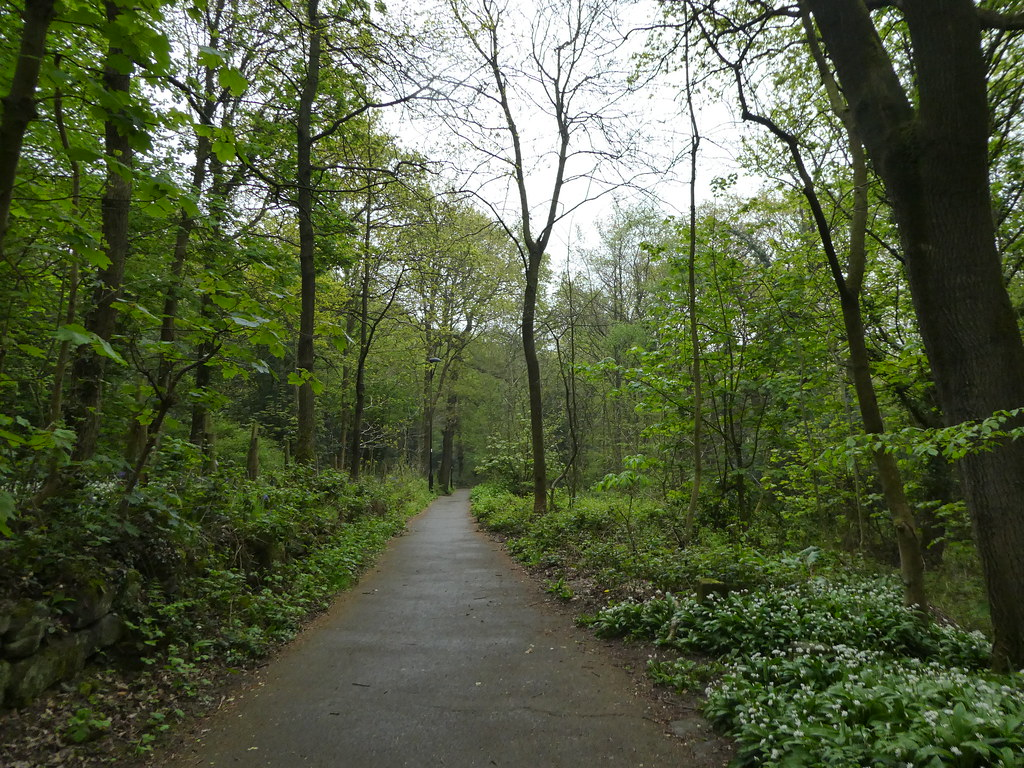 The path alongside the Shipley Glen Tramway