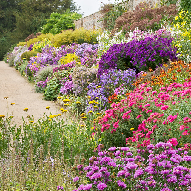 English Herbaceous Borders Waterperry Gardens
