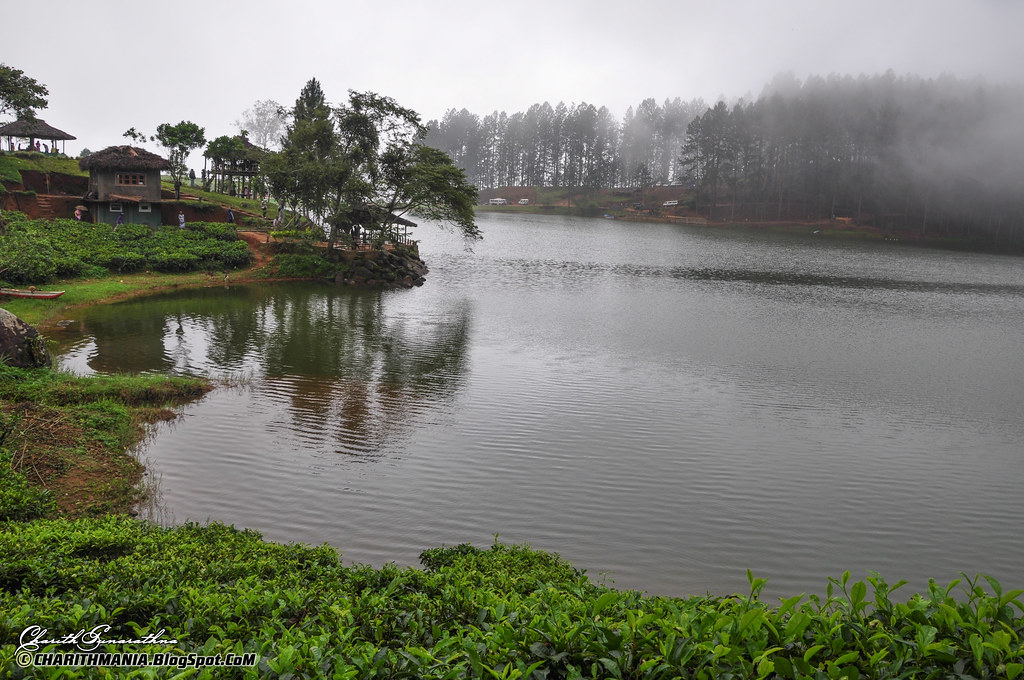 Misty Sembuwatta Lake Sri Lanka 169 Copyright Charith