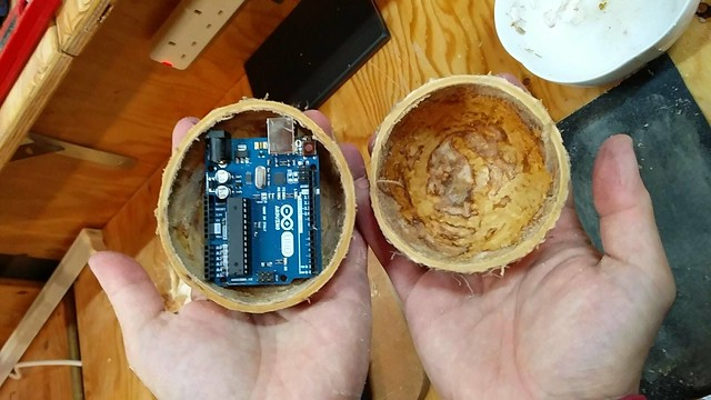 Arduino in coconut