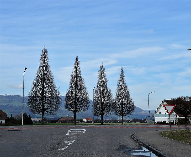 Feldbrunnen to Subingen via Derendingen und Gerlafingen 23.03 (25)