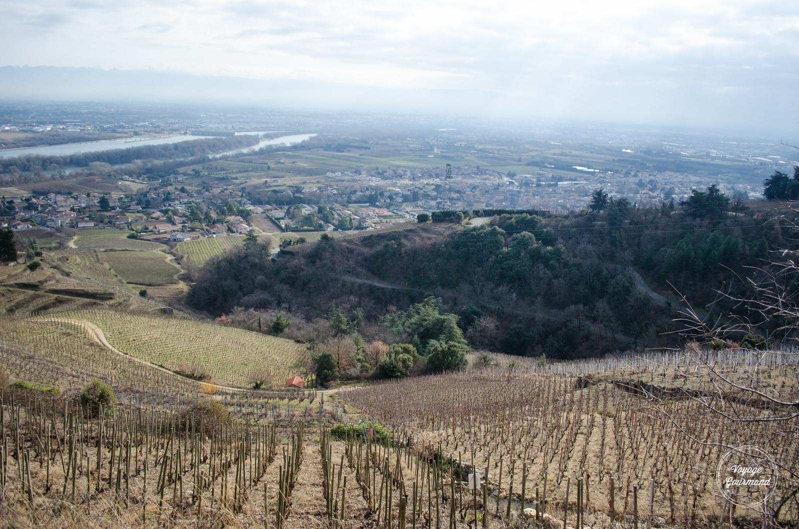 Ardèche, Domaine Colombo