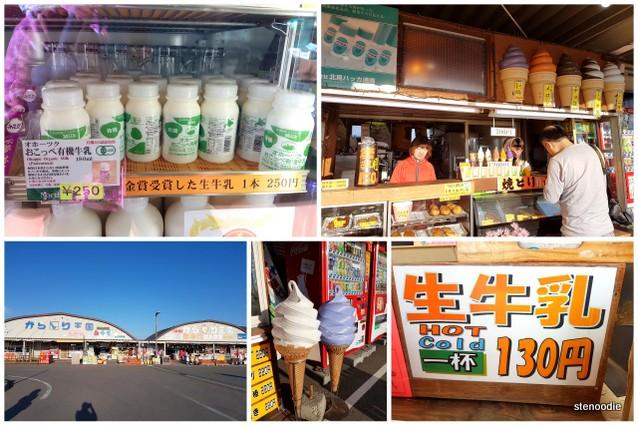 Hokkaido milk and ice cream