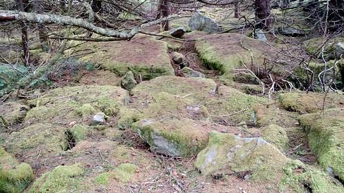 April 12 2017 Spruce Knob (2)
