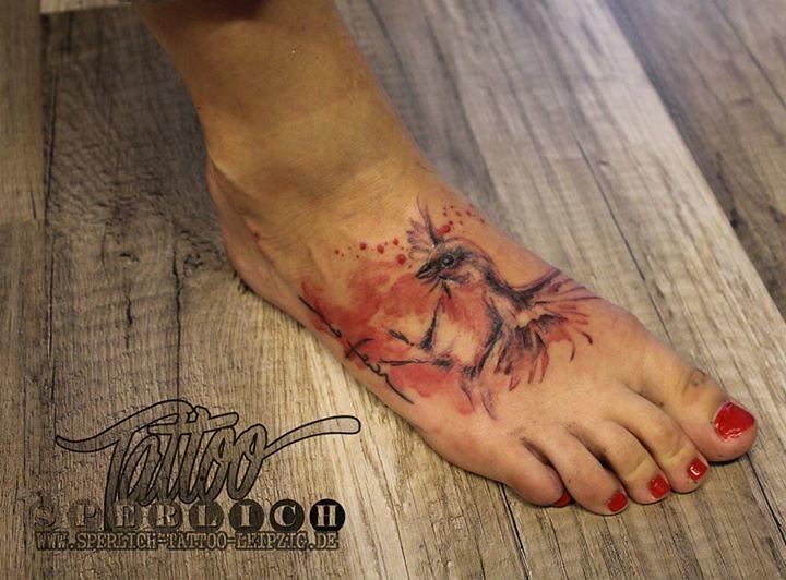 Aquarell Vogel Tattoo Sperlich Tattoo Flickr