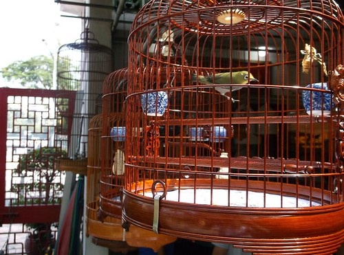 Kowloon bird cage | by Phil_Parker