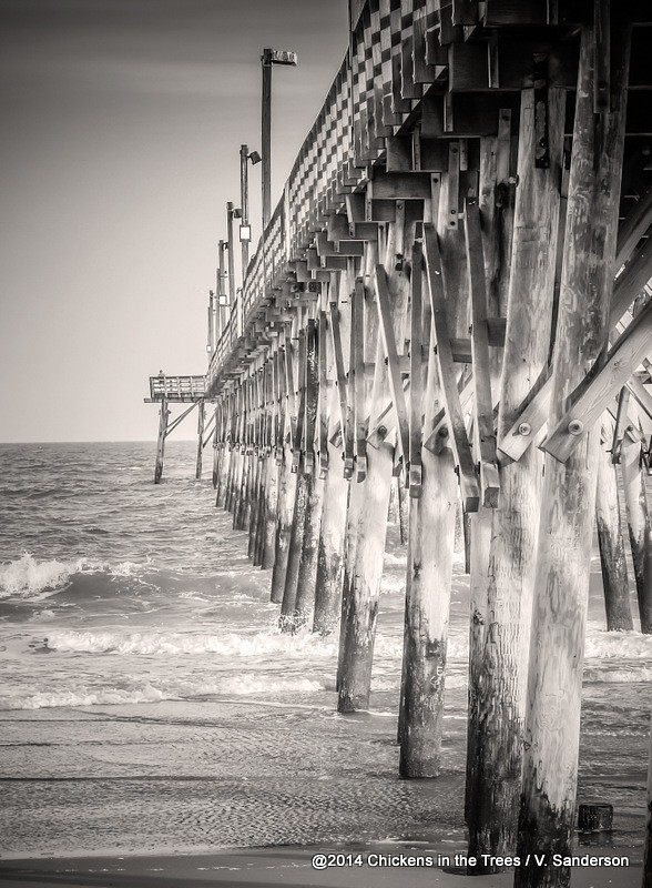 Fishing pier surf city beach topsail island nc sepia black for Surf city pier fishing report