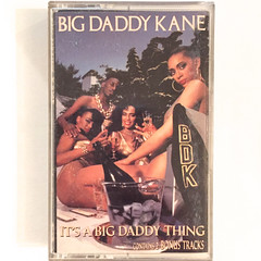 BIG DADDY KANE:IT'S A BIG DADDY THING(JACKET A)