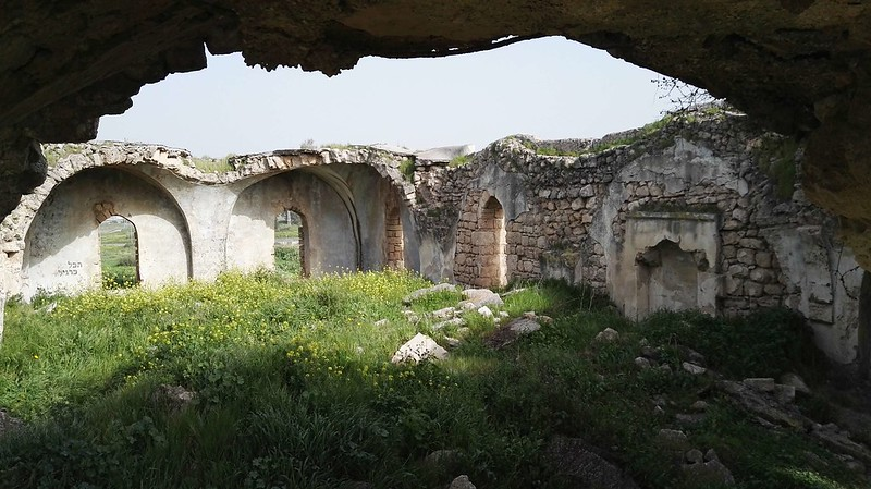 Tel-Ashdod-2-1218