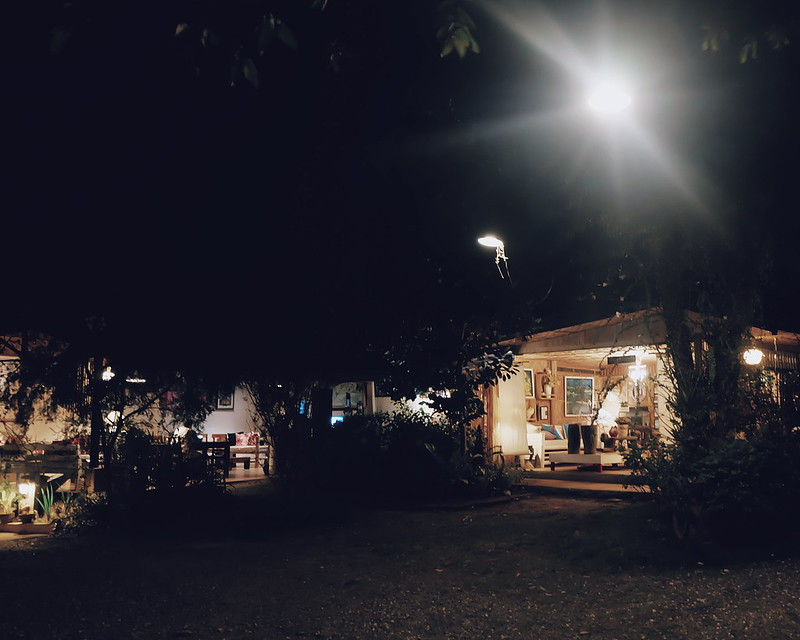 La Vida Orchard Samal