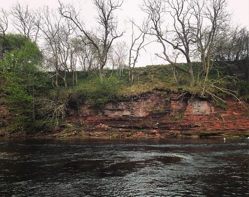 River Esk, Angus . #edzell #angus #scotland #scottishscenery #riveresk #river #stones