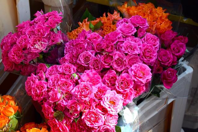 Roses at Columbia Road Flower Market | www.rachelphipps.com @rachelphipps