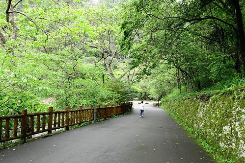 八仙山森林遊樂區